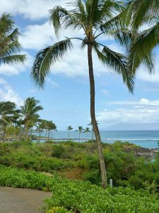 maui beaches vacation rentals