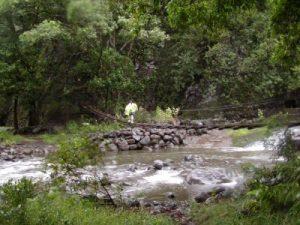 Waihee, Maui swinging bridges vacation destination