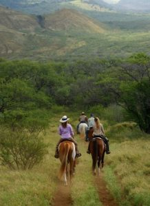 Makena Stables, Maui Hawaii, horse back riding