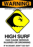 Warning - High Surf