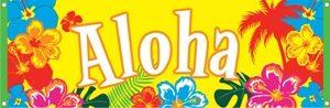 Souvenirs - Aloha Spirit