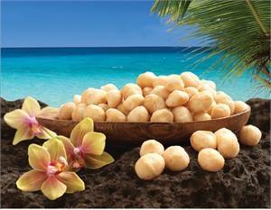 Souvenirs - Macadamia