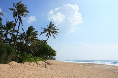 Sunset Beach Park Hawaii Hideaways