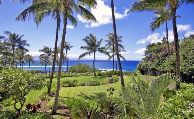 Aqua Surf at Montage - Backyard view - Maui Vacation Home