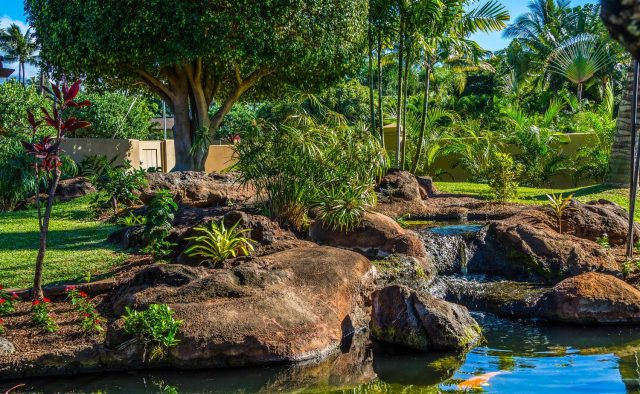 Golden Sands - Backyard water feature - Maui Vacation Home