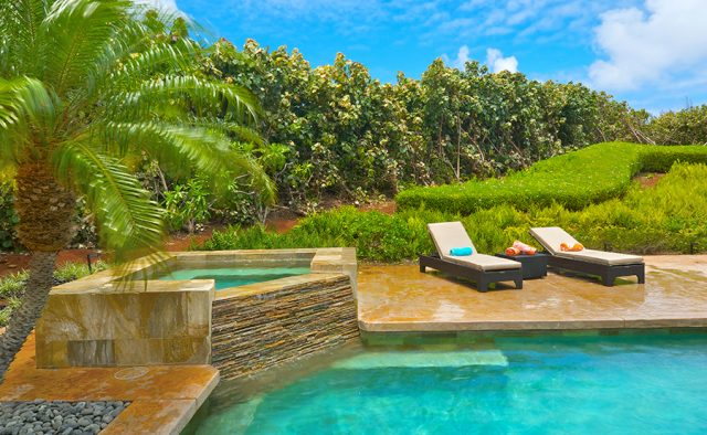 Star Steps - Pool - Hawaiian Luxury Vacation Home