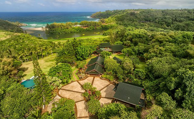 Whimsical Refuge - Aerial Shot - Luxury Vacation Homes