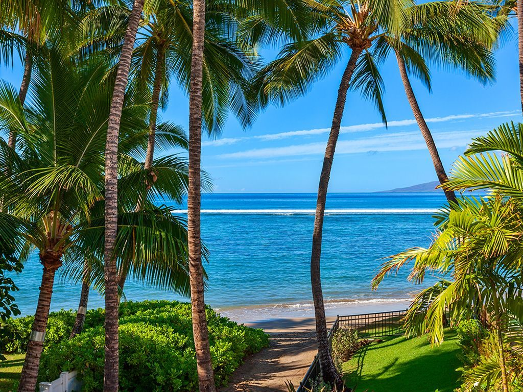 Beach Treasure - Backyard view - Hawaii Vacation Homes