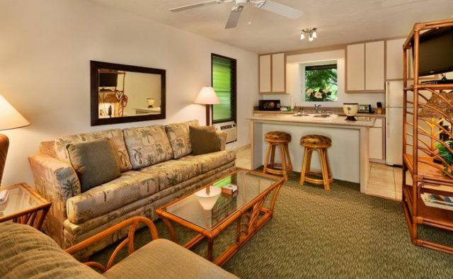 Dynamic Falls - Kitchenette - Hawaii Vacation Home