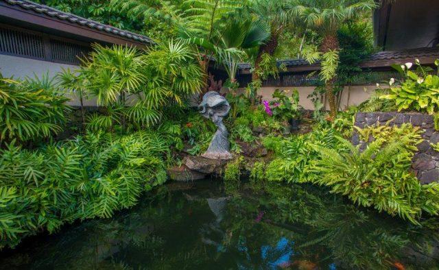 Stepping Stones - Pond - Hawaiian Luxury Vacation Home
