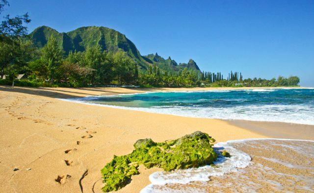 Hidden Passion - Beach - Kauai Vacation Home