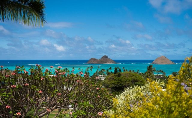 Kehaulani - View of Blue Ocean - Oahu Vacation Home